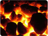 Solid Fuel Products